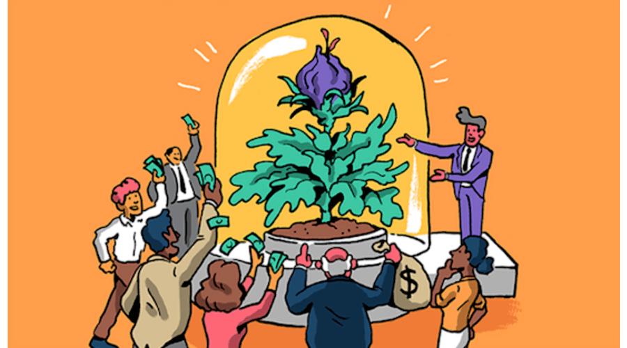 Hvordan investere i oppstartsselskaper