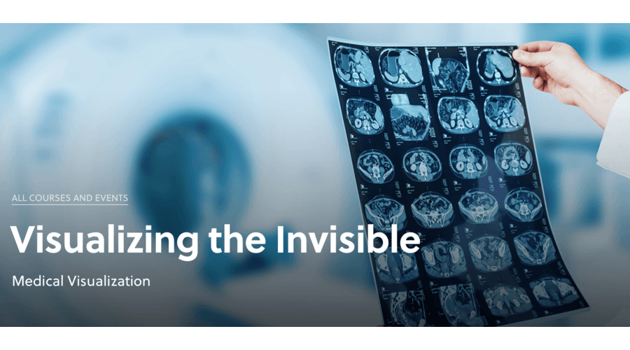 Medical Visualization: Visualizing the Invisible
